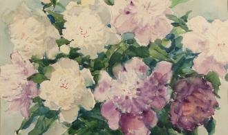 Peonies, 37x47.5 paper / watercolor